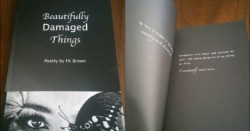 """Book Review of """"Beautifully Damaged Things"""" By FK Brown"""