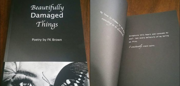 "Book Review of ""Beautifully Damaged Things"" By FK Brown"