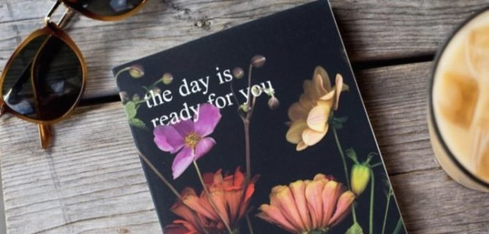 "A Review of ""The Day is Ready For You"" written by Alison Malee"