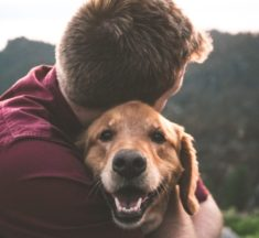 Emotional Support Animals: Improving Your Quality of Life