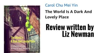 A Review of The World Is A Dark And Lovely Place by Carol Chu Mei Yin – Liz Newman